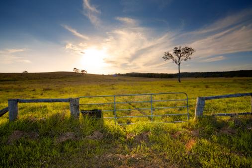 Queensland「Rustic Gate, Australian Farmland」:スマホ壁紙(4)
