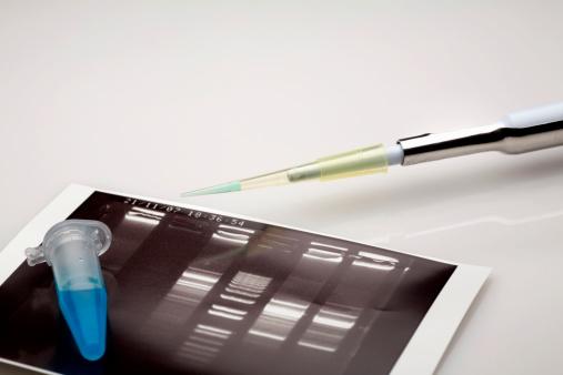 父親「気になる DNA 分析」:スマホ壁紙(13)