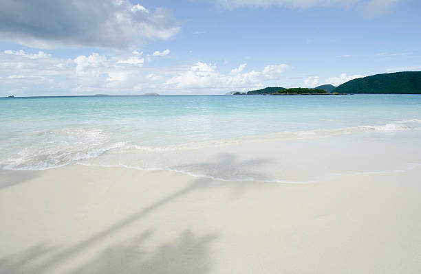 USA, Virgin Islands, St. John, Shadow of palm trees on sandy beach:スマホ壁紙(壁紙.com)