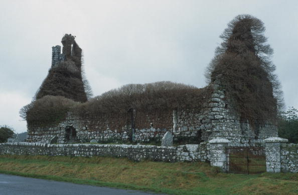 Overgrown「Clomantagh Church」:写真・画像(4)[壁紙.com]