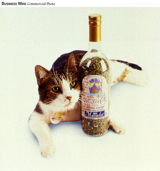 Animal Whisker「Introducing Whisker City Meowlot: A Petsmart Report Exclusive Whisker City Meowlot The Champagne」:写真・画像(10)[壁紙.com]