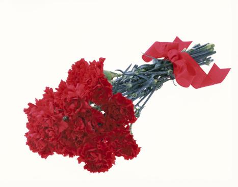カーネーション「Carnations」:スマホ壁紙(1)