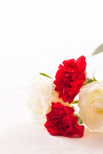 Father's Day「Carnations and white roses」:スマホ壁紙(3)