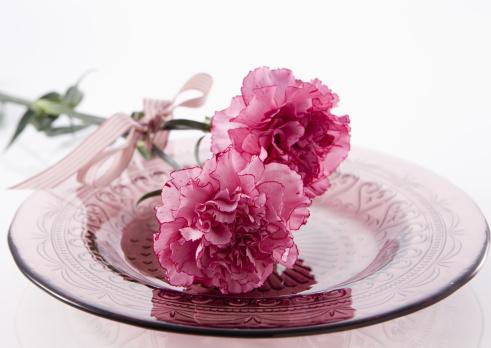 カーネーション「Carnations」:スマホ壁紙(14)