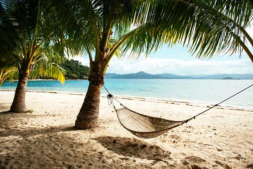 Palm tree「Philippines, Palawan, hammock and palms on a beach near El Nido」:スマホ壁紙(3)