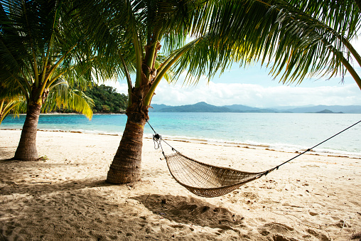 トウヒ「Philippines, Palawan, hammock and palms on a beach near El Nido」:スマホ壁紙(3)