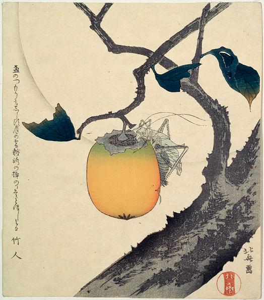 柿「'Moon, Persimmon and Grasshopper', 1807. Artist: Hokusai」:写真・画像(18)[壁紙.com]