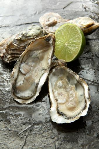 Mollusk「SeafoodStills: Oysters」:スマホ壁紙(13)