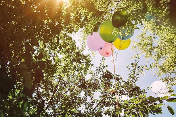 Helium ballons hanging in trees:スマホ壁紙(壁紙.com)