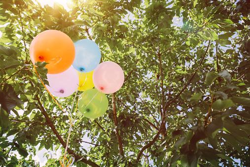 Celebration「Helium ballons hanging in trees」:スマホ壁紙(8)