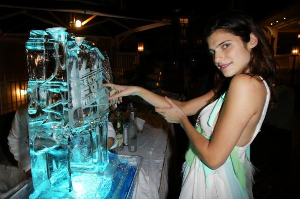 Ice Sculpture「Twentieth Century Fox Televison's New Season Party」:写真・画像(16)[壁紙.com]