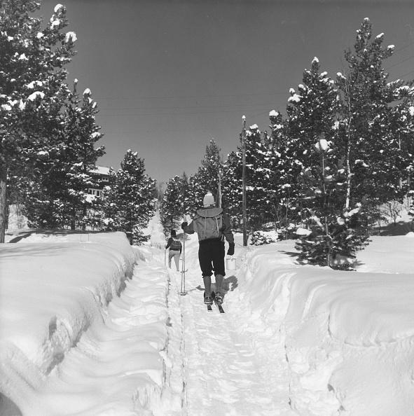 George Freston「Snowy Trek」:写真・画像(4)[壁紙.com]