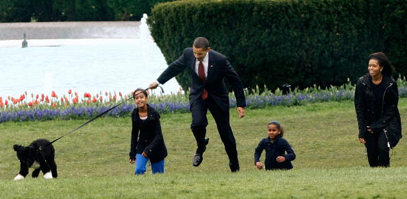 Pet Owner「The White House Debuts The Obamas' New Dog Bo, A Portuguese Water Dog」:写真・画像(15)[壁紙.com]