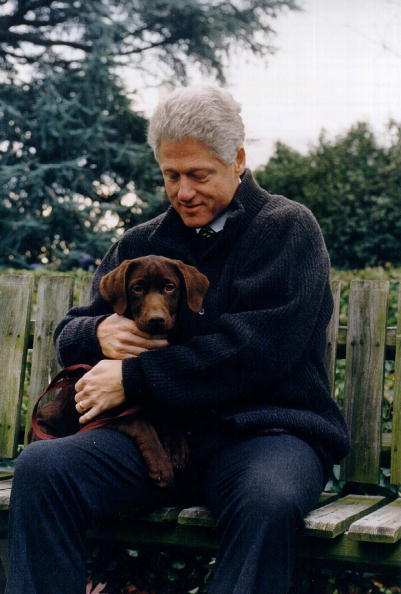 犬「President Clinton with his new puppy」:写真・画像(8)[壁紙.com]