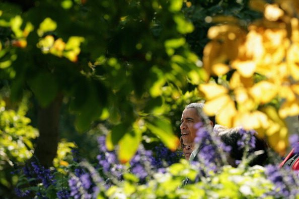 Insurance「President Obama Speaks On The Government Shutdown In The Rose Garden」:写真・画像(8)[壁紙.com]