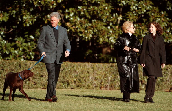 animal「Clintons leave for Hilton Head」:写真・画像(5)[壁紙.com]