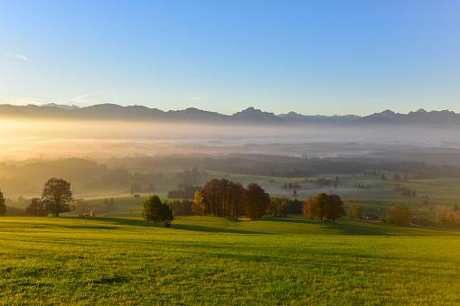 Rolling Landscape「Germany, Allgaeu, autumnal landscape at sunrise」:スマホ壁紙(17)