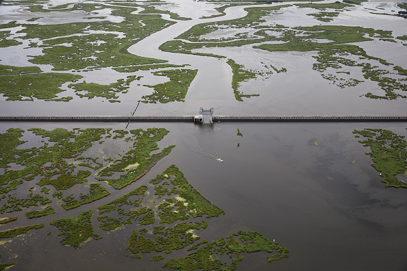 Land「Combination Of Rising Sea Levels And Subsiding Land Endanger Louisiana Coast」:写真・画像(5)[壁紙.com]