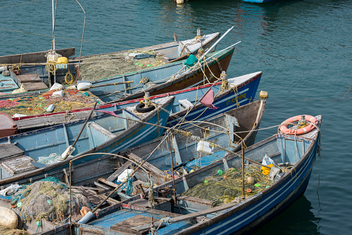 アラビア海「Port city of Villanjam (Vizhinjam) along coast of Arabian Sea, Traditional wooden fishing boats in harbor, Malabar Coast, Kerala, India」:スマホ壁紙(8)