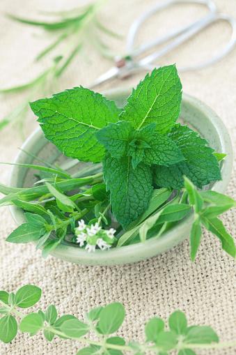 Tarragon「Fresh Herbs」:スマホ壁紙(11)