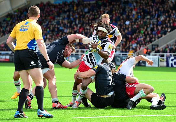 Mark Wilson「Newcastle Falcons v Harlequins - Aviva Premiership」:写真・画像(12)[壁紙.com]