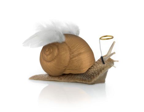 snails「Angelsnail」:スマホ壁紙(4)