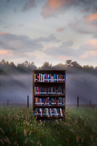 Bookshelf「Books in bookcase in field」:スマホ壁紙(17)