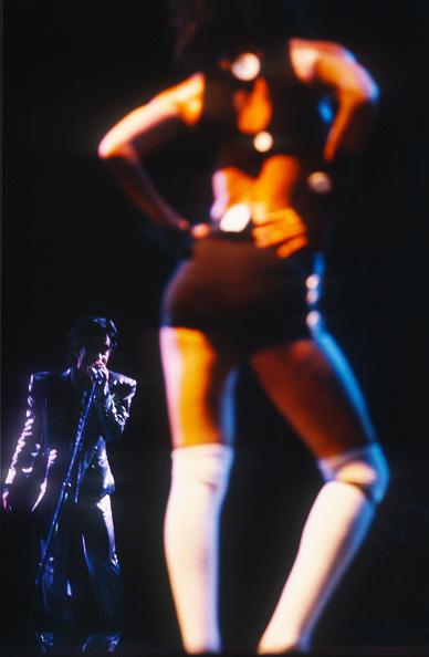 猫「Prince」:写真・画像(8)[壁紙.com]