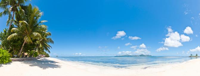 ビーチ「島の牧歌的な熱帯白い砂浜のビーチでヤシの木の海セイシェル諸島」:スマホ壁紙(18)