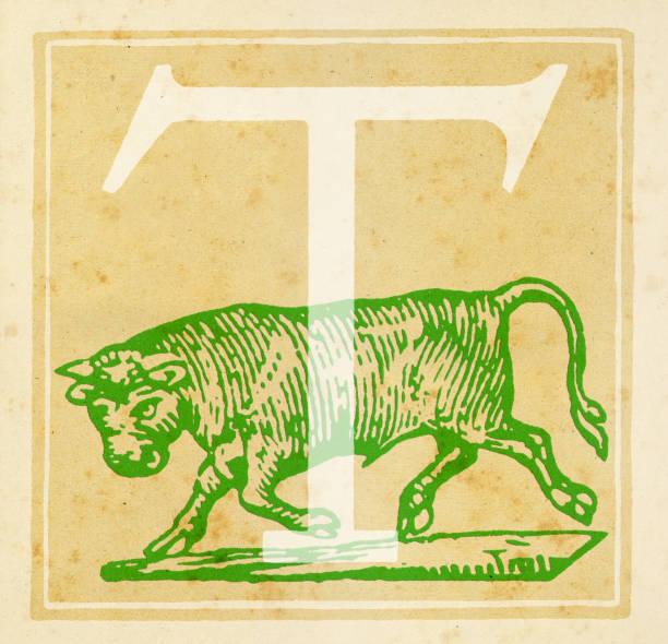 Taurus Zodiac sign:ニュース(壁紙.com)