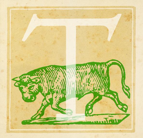 Letter T「Taurus Zodiac sign」:写真・画像(9)[壁紙.com]