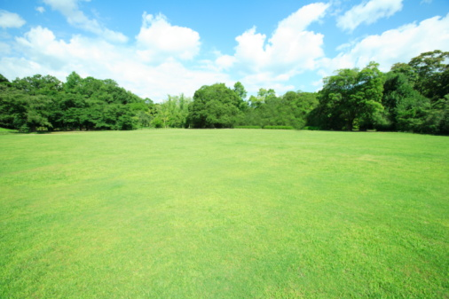 Lawn「Park, Kyoto City, Kyoto Prefecture, Honshu, Japan」:スマホ壁紙(1)