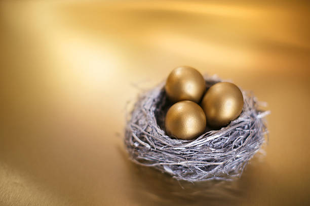Nest Egg with Gold Coins:スマホ壁紙(壁紙.com)
