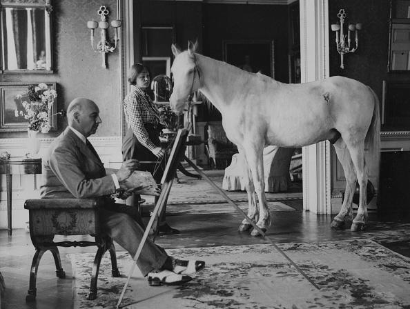 Horse「Painting A Pony」:写真・画像(17)[壁紙.com]