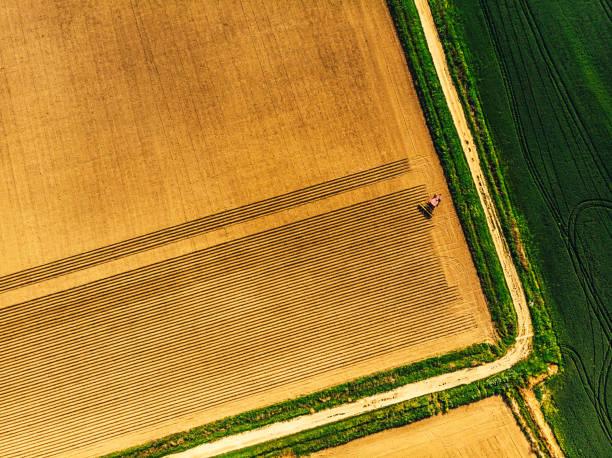 Spring sowing season in Turkey:スマホ壁紙(壁紙.com)