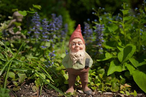 Garden Gnome「Gnome in the garden」:スマホ壁紙(6)