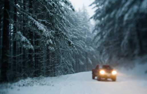 Driving「Vehicle on snowy forest road」:スマホ壁紙(15)