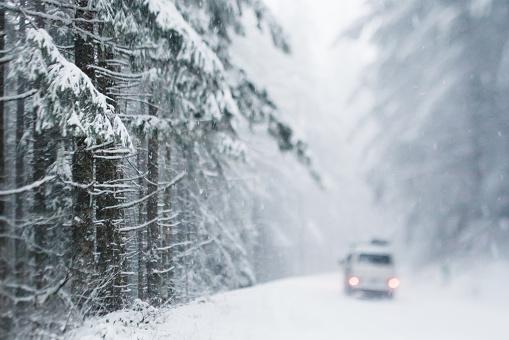 吹雪「車で forest road ユキコ」:スマホ壁紙(14)