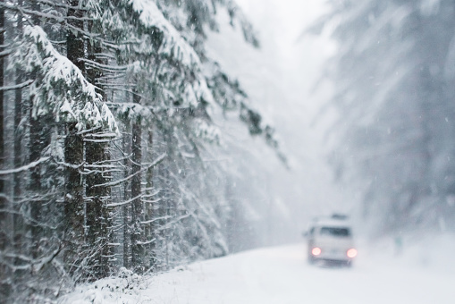 Mt Hood「Vehicle on snowy forest road」:スマホ壁紙(14)