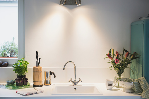Kitchen Sink「Interior of a kitchen with bunch of flowers」:スマホ壁紙(15)