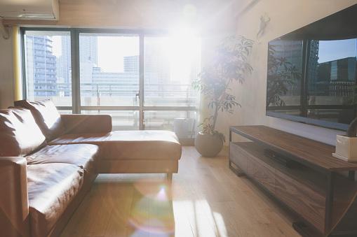 太陽の光「リビングルームのインテリア」:スマホ壁紙(7)