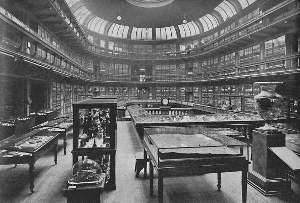 Specimen Holder「Interior Of The Geological Museum Jermyn Street 1904」:写真・画像(4)[壁紙.com]