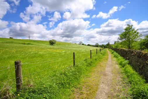 柵「Yorkshire spring landscape」:スマホ壁紙(17)