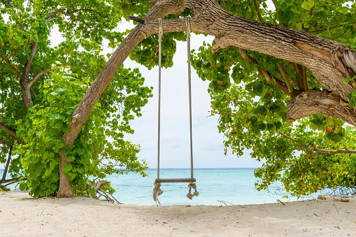 Indian Ocean「Rope swing in the Maldives」:スマホ壁紙(12)