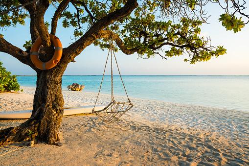 豪華 ビーチ「Dhiffushi ホリデイ アイランド、南アリ環礁、モルディブにロープ スイング」:スマホ壁紙(15)