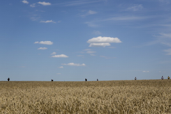 Wheat「298 Crew And Passengers Perish On Flight MH17 After Suspected Missile Attack In Ukraine」:写真・画像(19)[壁紙.com]