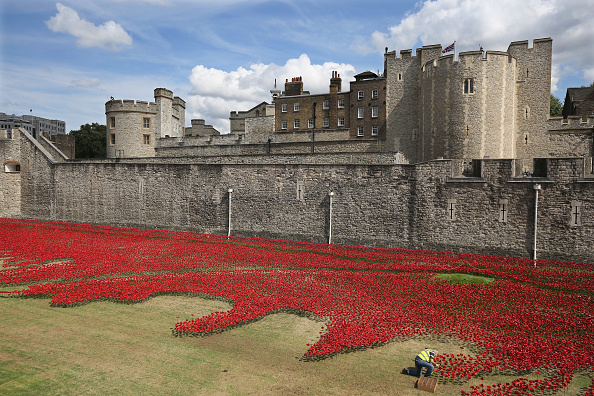 100th Anniversary「Ceramic Poppy Installation To Commemorate World War One Takes Shape At The Tower Of London」:写真・画像(9)[壁紙.com]