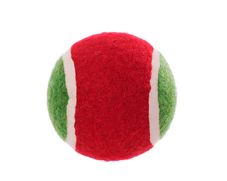 Mammal「Tennis Ball Dog Toy」:スマホ壁紙(6)