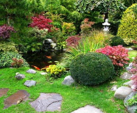 Carp「Japanese garden」:スマホ壁紙(0)