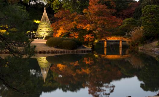 Japanese Maple「Japanese garden」:スマホ壁紙(7)